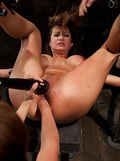 Cougar Bondage Pictures